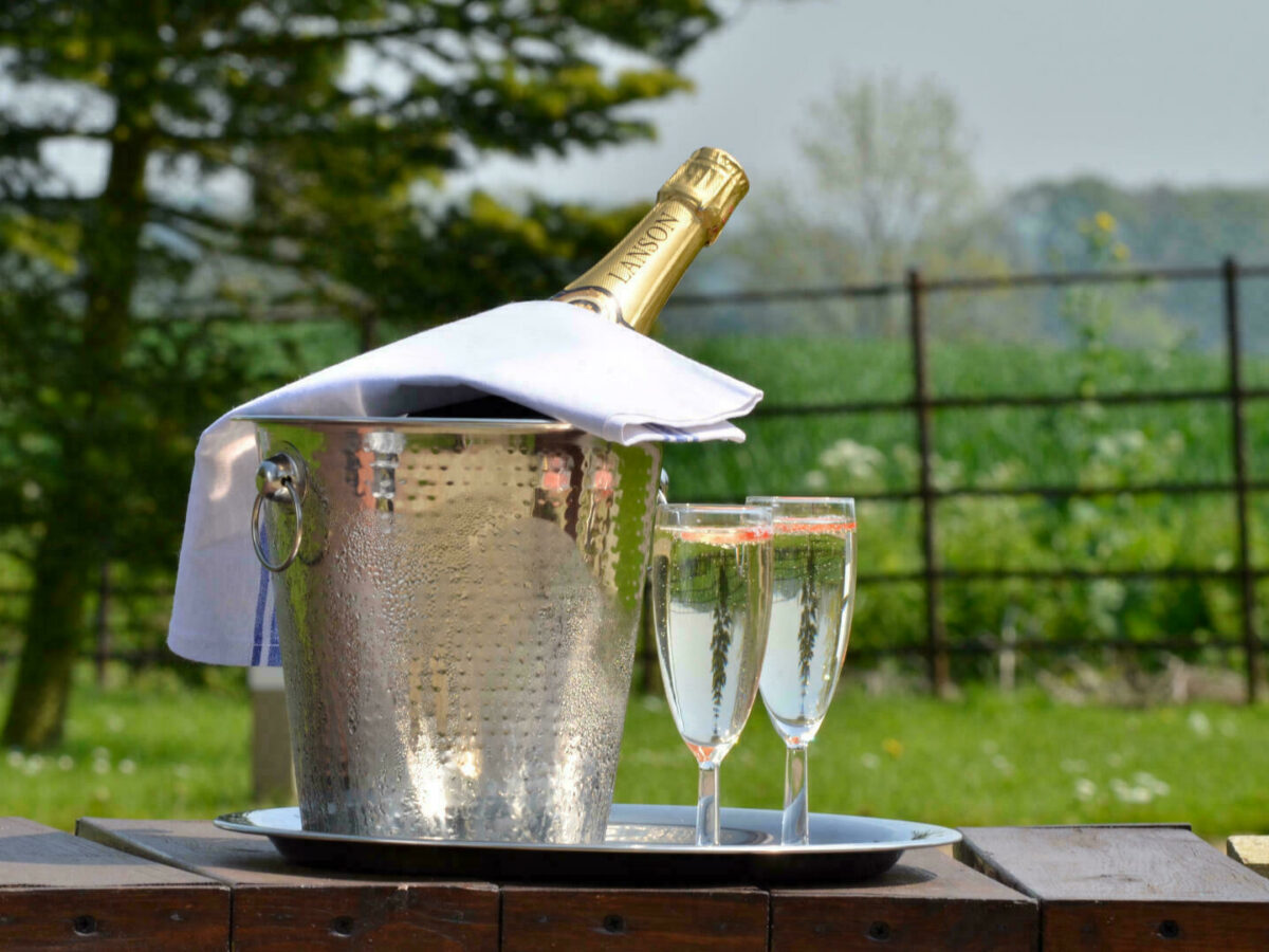 Champagne cooler in the garden