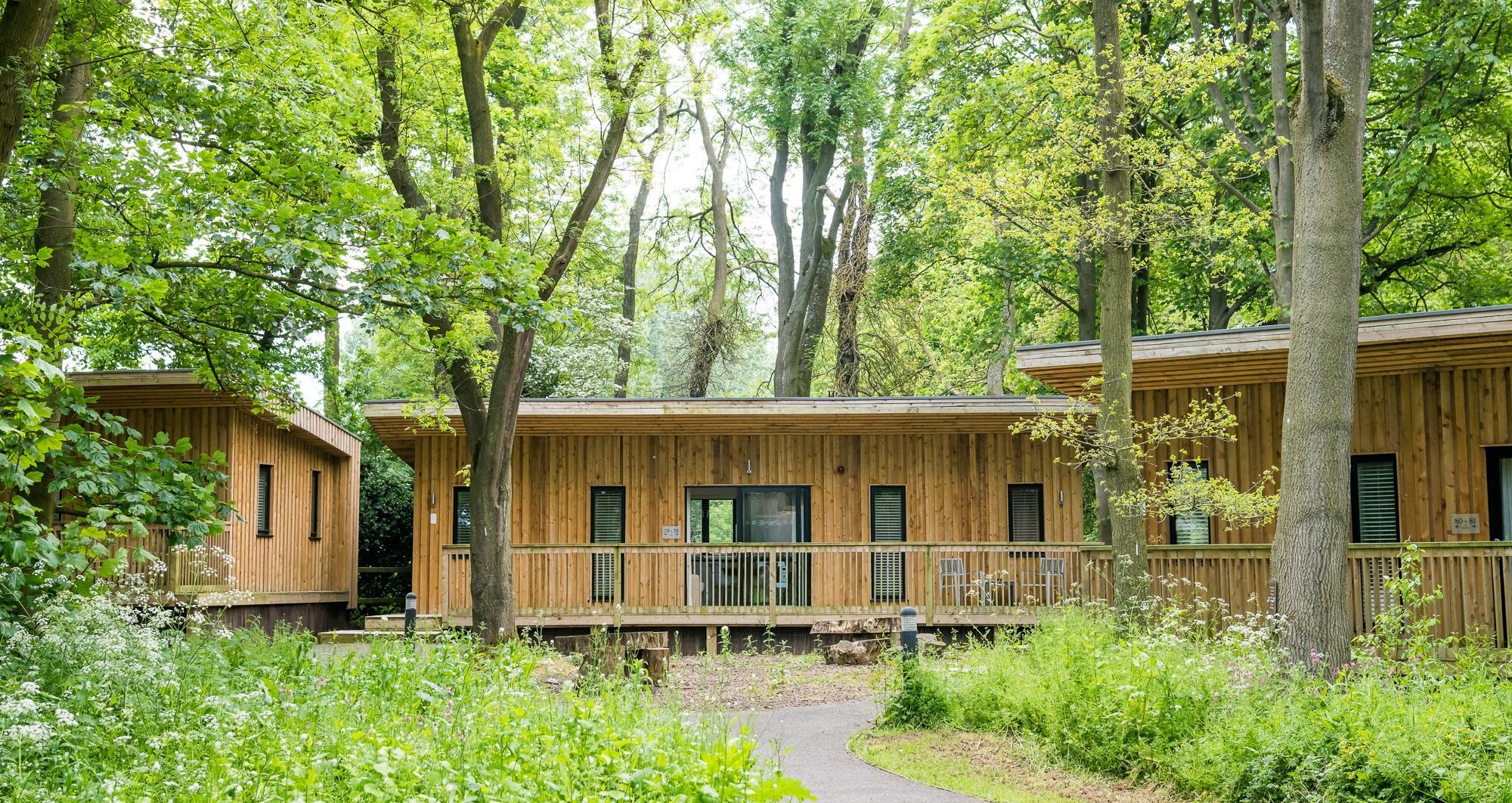 The Woodlands accommodation