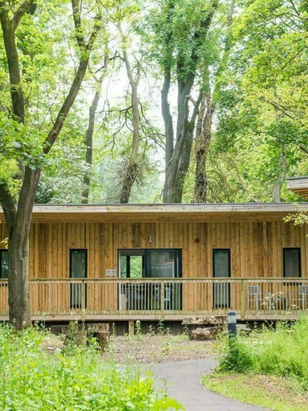 The Woodlands accommodation