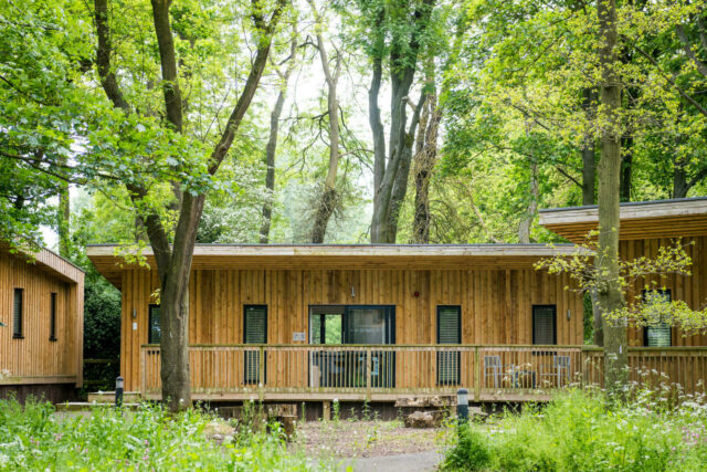 Woodland snug cabin accommodation