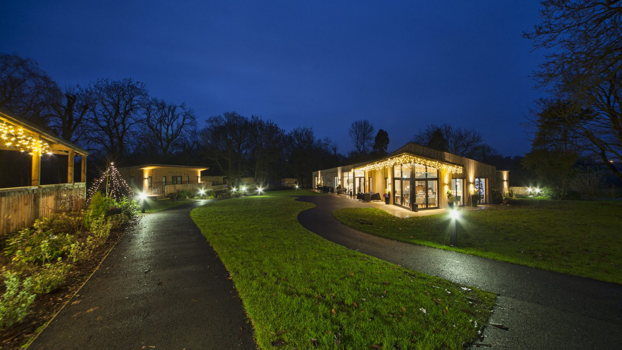 Woodland venue at night